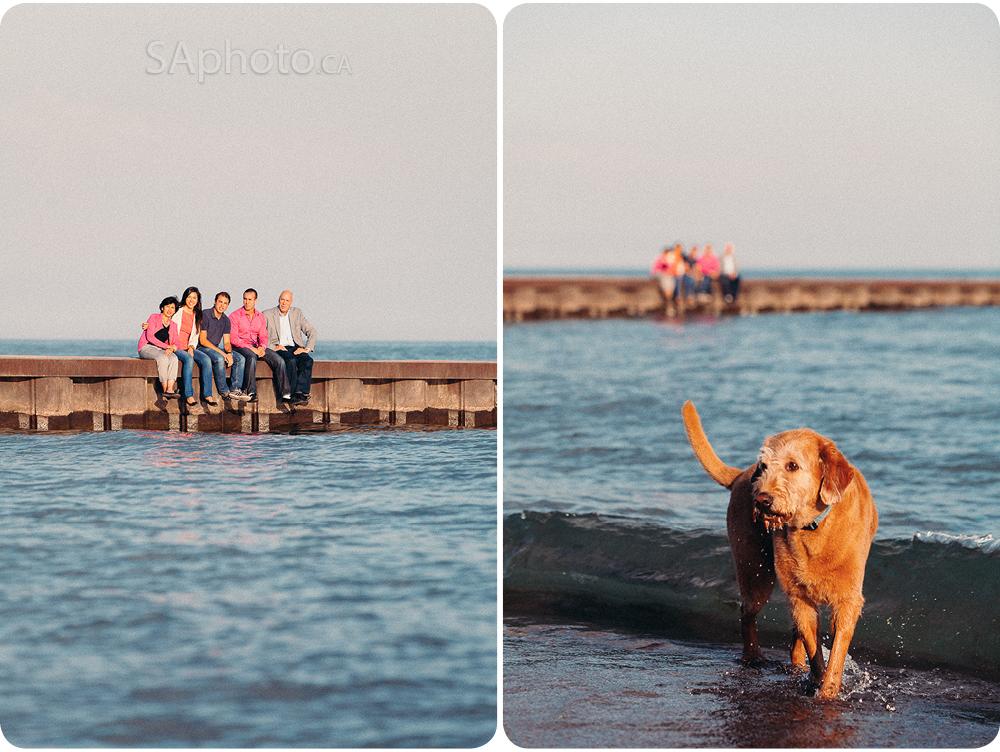 Sur les plages à Toronto, on peut toujours compter sur le fait qu'il y aura un chien à un moment ou l'autre de la session.